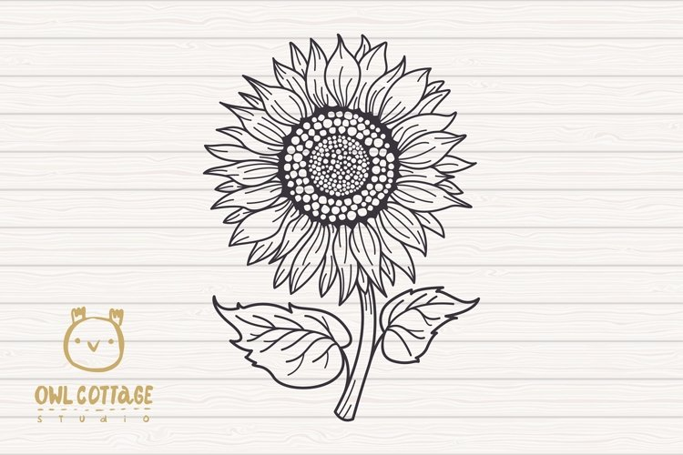 Sunflower Monograms svg, Sunflower mini bundle, Sunflower cl - Free Design of The Week Design5