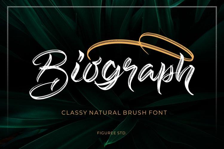 Biograph - Brush Font example image 1