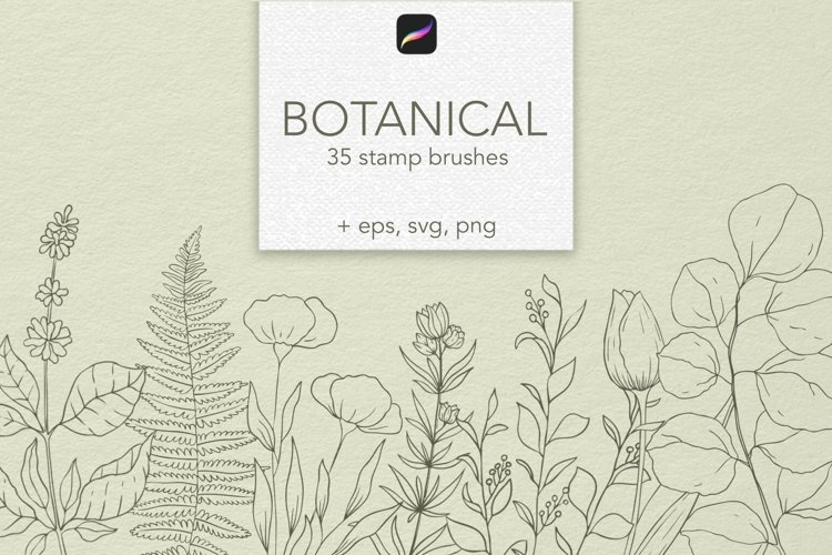 Botanical Procreate stamp brushes, vector clipart example image 1