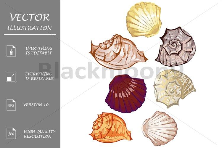 Multicolored seashells example image 1