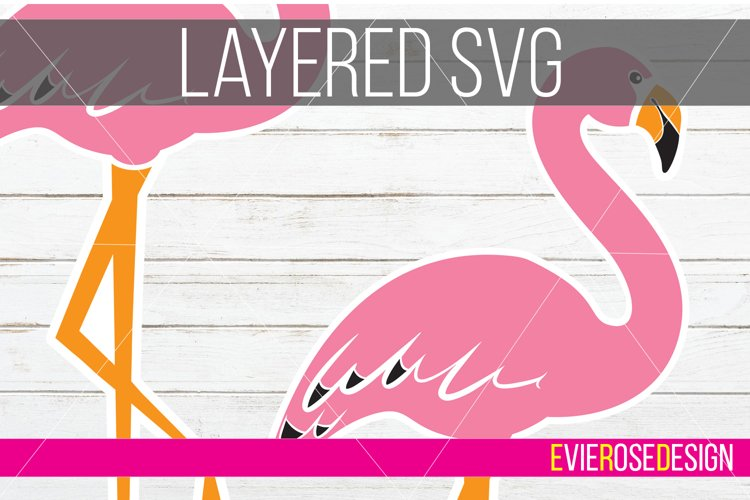 Flamingo Clipart and Cut File Set - Includes Layered SVG