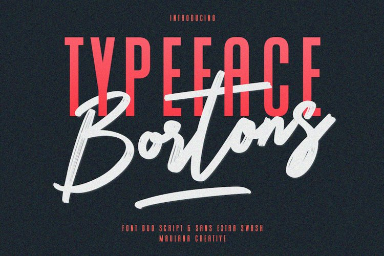Bortons Font Duo Swash Typeface example image 1