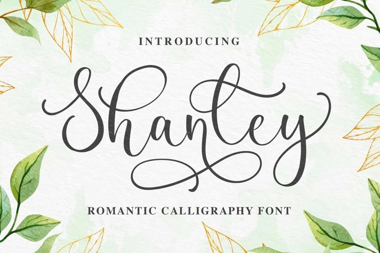 Shanley a Romantic Calligraphy Font example image 1