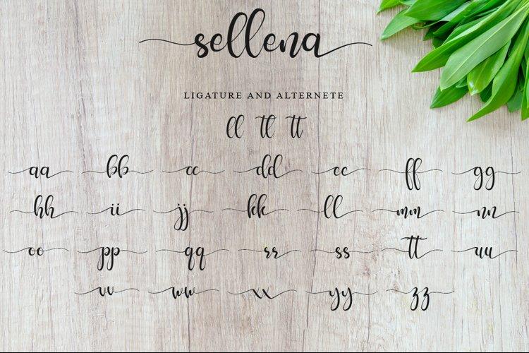 Sellena example 8
