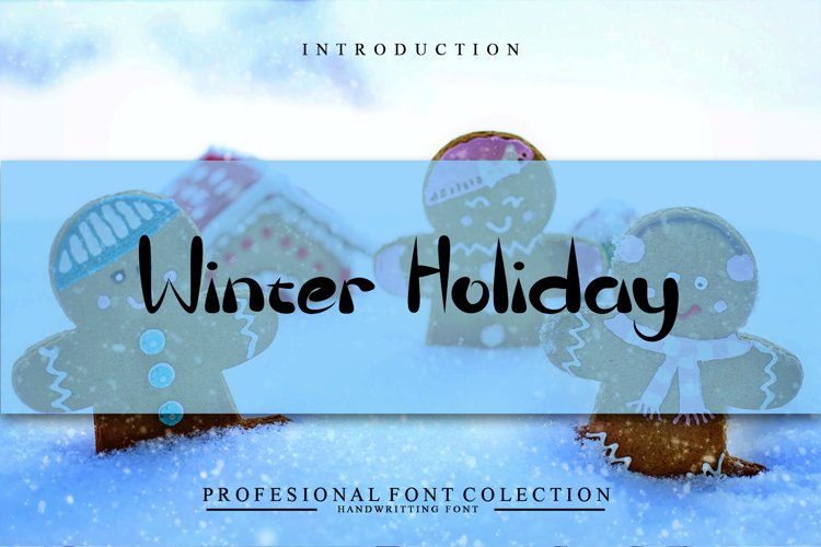 Winter Holiday example image 1