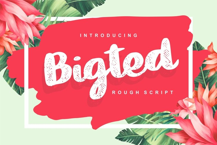Bigted   Rough Script Font example image 1