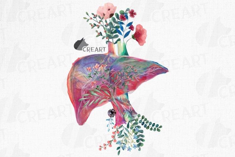 Floral anatomical liver decor design. Floral human liver png example image 1