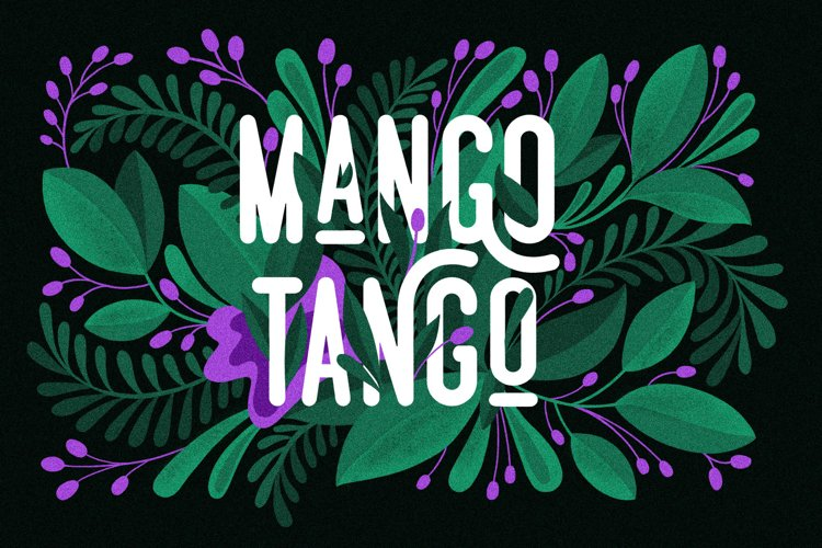 3 Fonts Mango Tango Collection example image 1