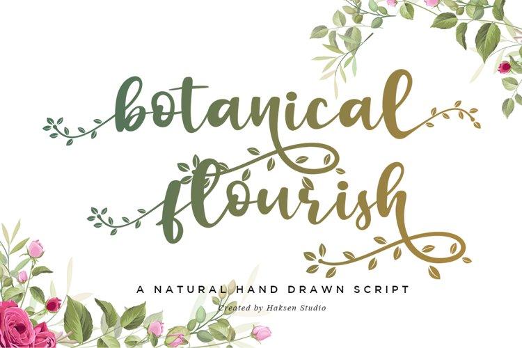 Botanical Flourish a Natural Handwritten Font example image 1