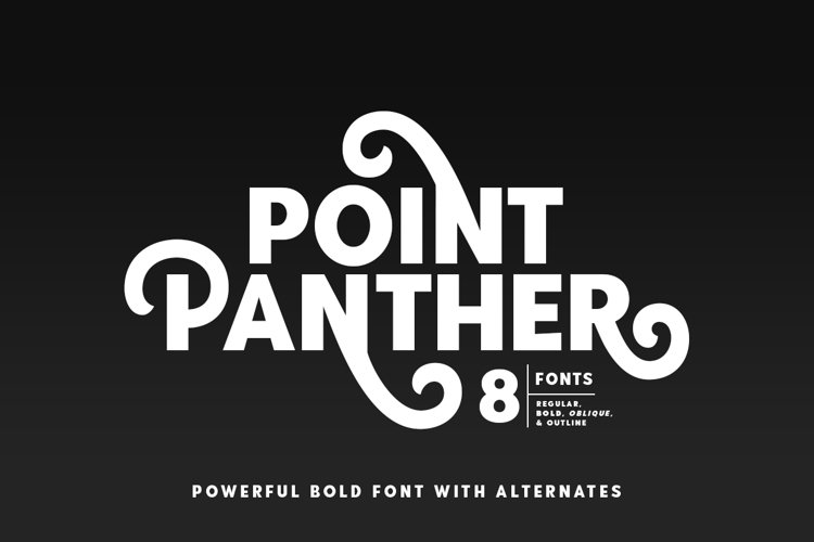 Point Panther example image 1