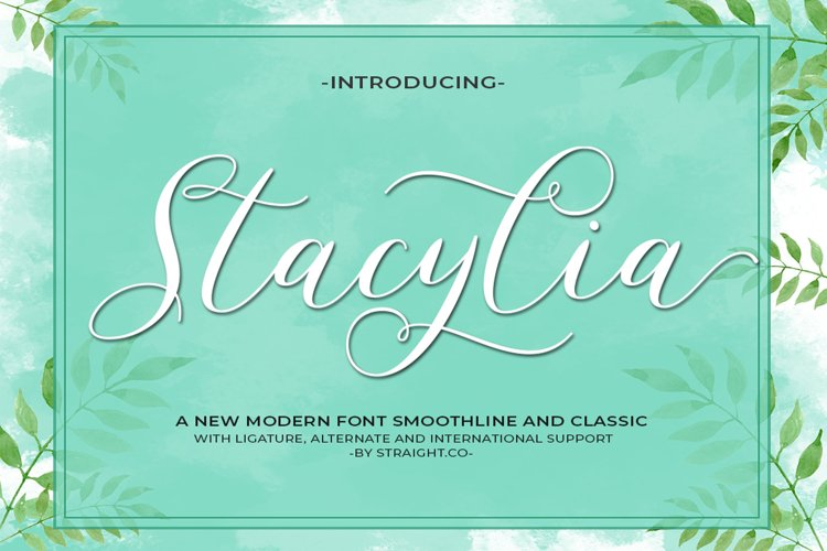 Stacylia example image 1