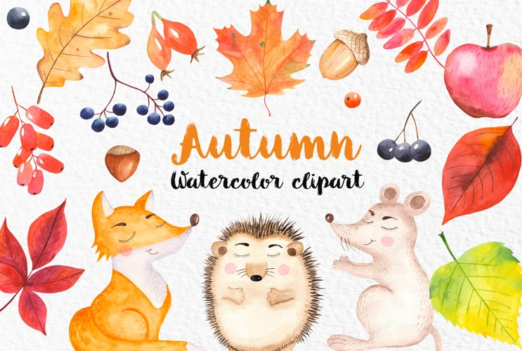 Watercolor autumn clipart. Cute fox, hedgehog, mouse. Cards