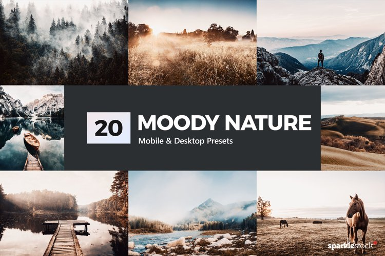 Moody Nature Lightroom Presets & LUTs example image 1