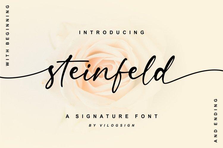 Steinfeld a Handwritten Script Font