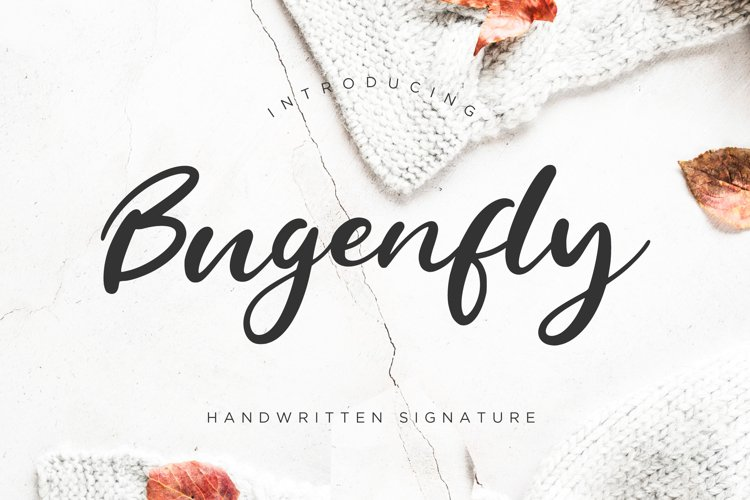 Bugenfly Handwritten Signature example image 1