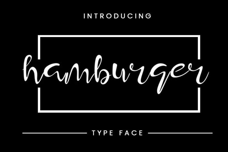 Hamburger Typeface example image 1