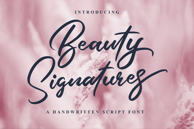 Web Font Beauty Signatures example image 1