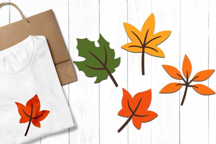 Autumn Leaves Clip art Illustrations