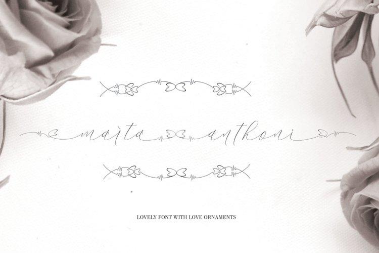 marta anthoni example image 1