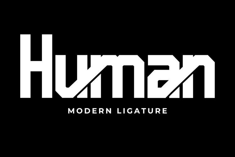Pro Human example image 1