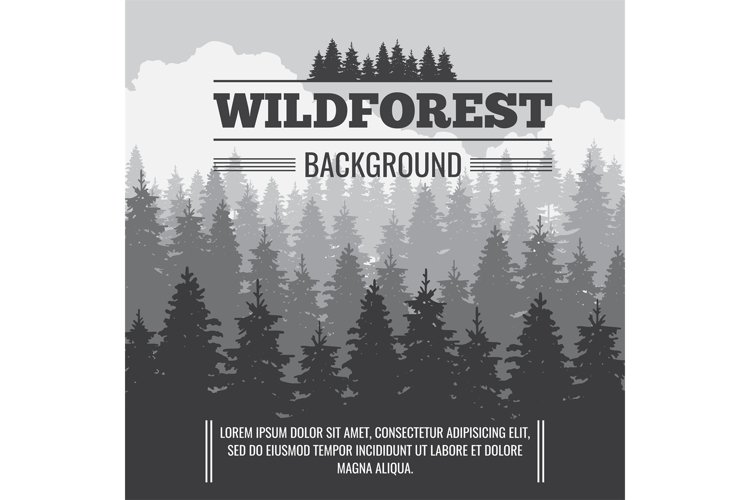 Wild coniferous pine forest vector outdoor nature background example image 1