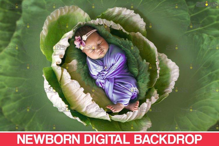 Floral Backdrop & Newborn backdrop Photoshop overlay example image 1