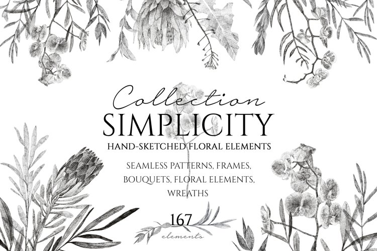 Simplicity Hand Sketched Collection