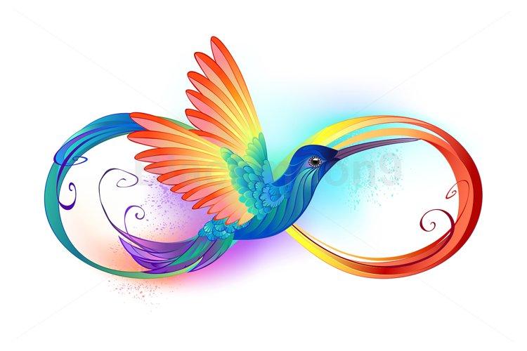 Rainbow Hummingbird with Infinity