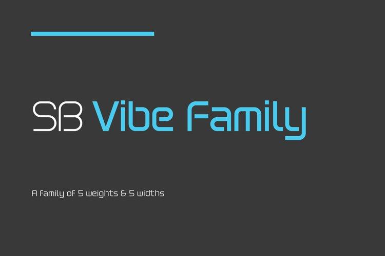 SB Vibe Family - 50 font bundle example image 1