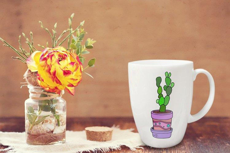 Cactus Bundle example 1