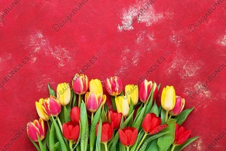 Bouquet of colorful tulips on bright red background. example image 1