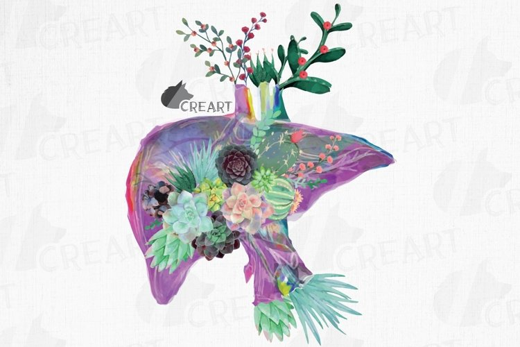 Succulent and cactus floral anatomical liver decor design. example image 1