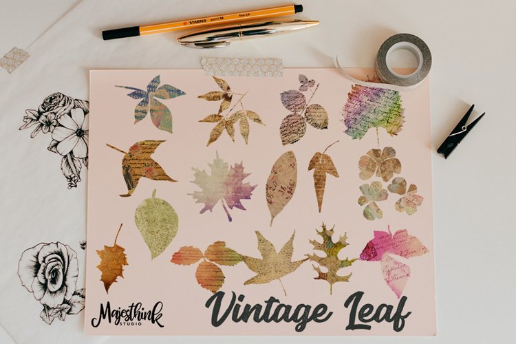 Vintage Leaf Clip Art - with Old Paper Postcard Texture Distressed Grunge Brown Color example image 1
