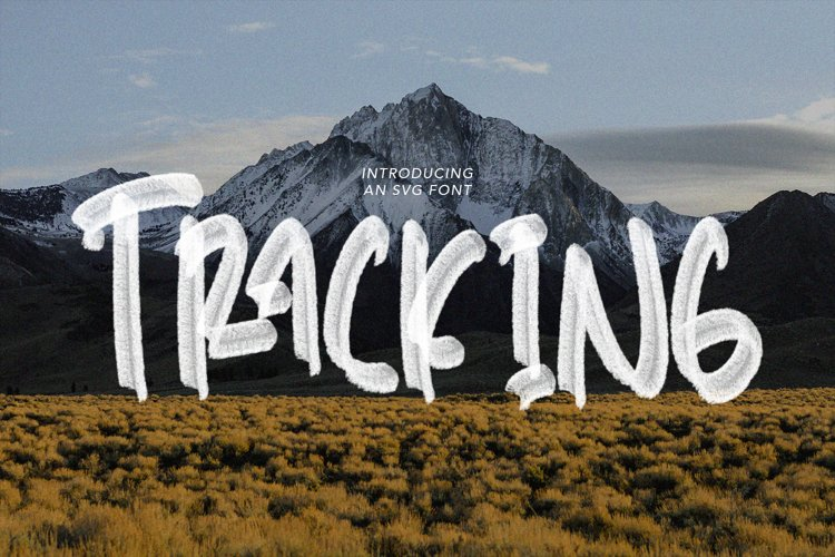 Tracking - SVG Font example image 1