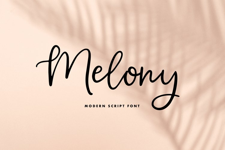 Melony | Modern Script Font example image 1
