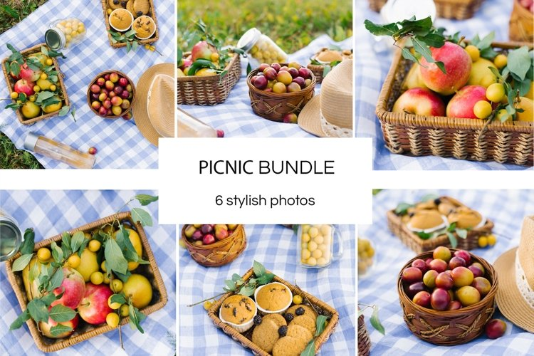 Summer picnic Bundle example image 1