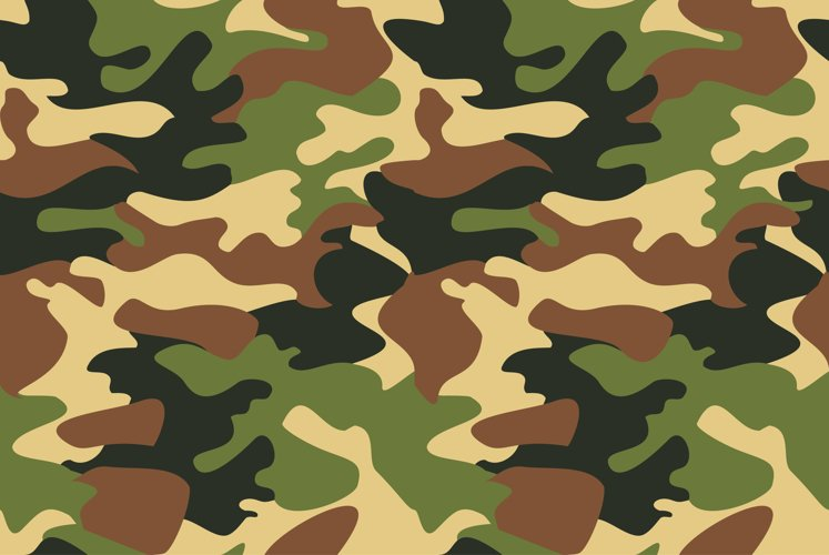 Camouflage pattern background virtual background for Zoom example image 1