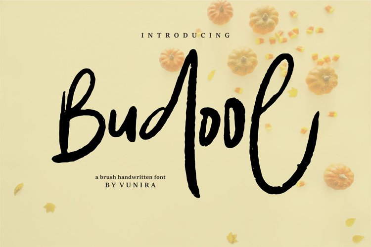 Budool | A Brush Handwritten Font example image 1