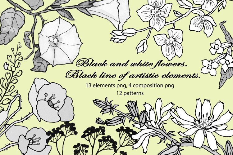 Black and white flowers. Black line of artistic elements.