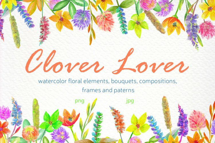 Watercolor colorful flowers Clover lover