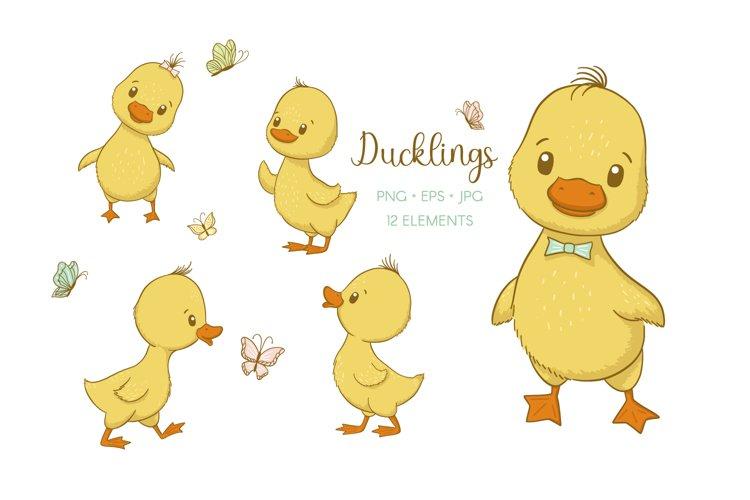 Cute Ducklings, PNG, EPS, JPG, 300 DPI example image 1