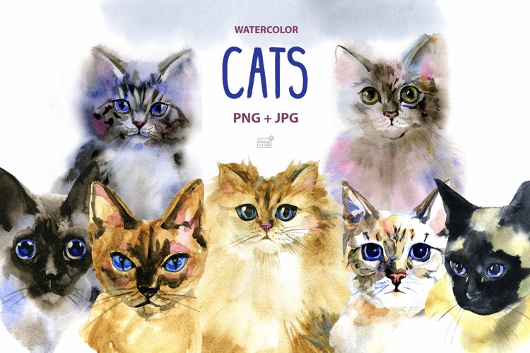 Watercolor cats clipart example image 1