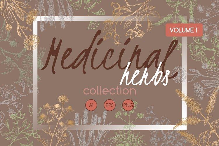 Medicinal herbs sketch set Vol.1