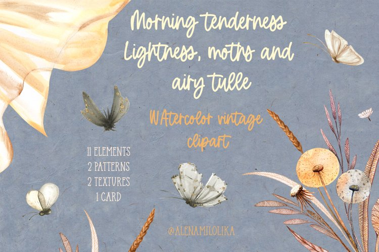 Watercolor morning clipart. Lightness, moths and airy tulle