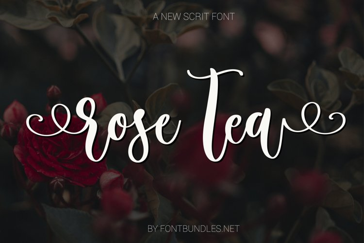 Rose Tea Script Font with swashes