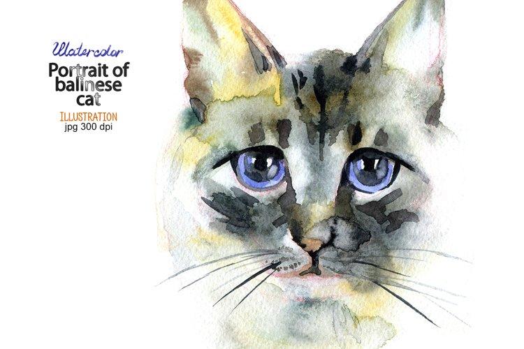 Watercolor portrait of balinese cat