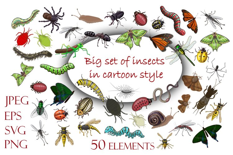Insects collection. Vector