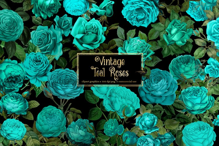 Vintage Teal Roses Clipart example image 1