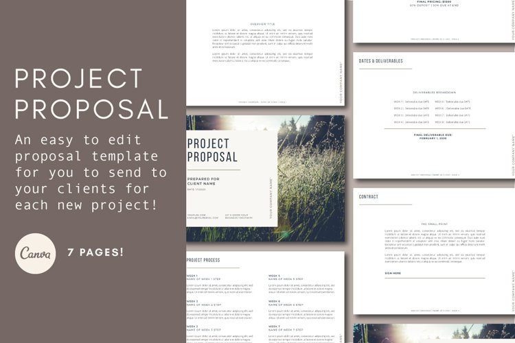 Project Proposal | Client Onboarding example image 1