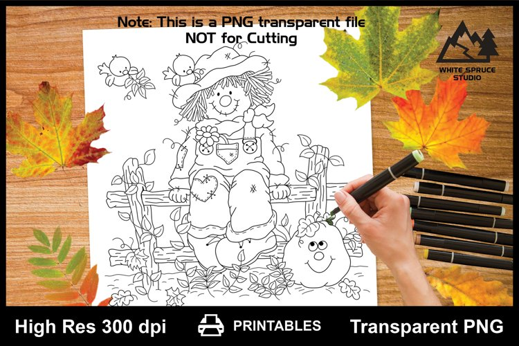 Autumn Scarecrow, Fence, Pumpkin, Fall Scene, Birds, Leaves